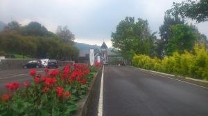Kebun raya
